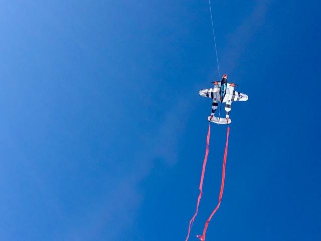 Kites over Port Aransas