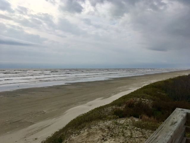 Gulf Winter