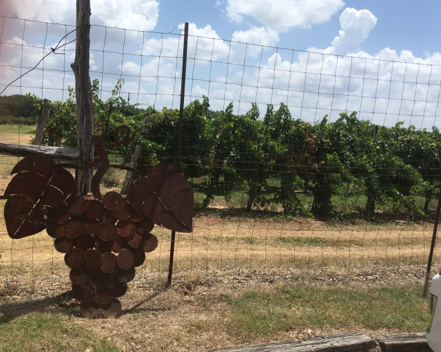Spicewood Winery