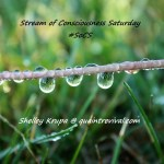 A picture of a string with drops of water- the logo for SoCS
