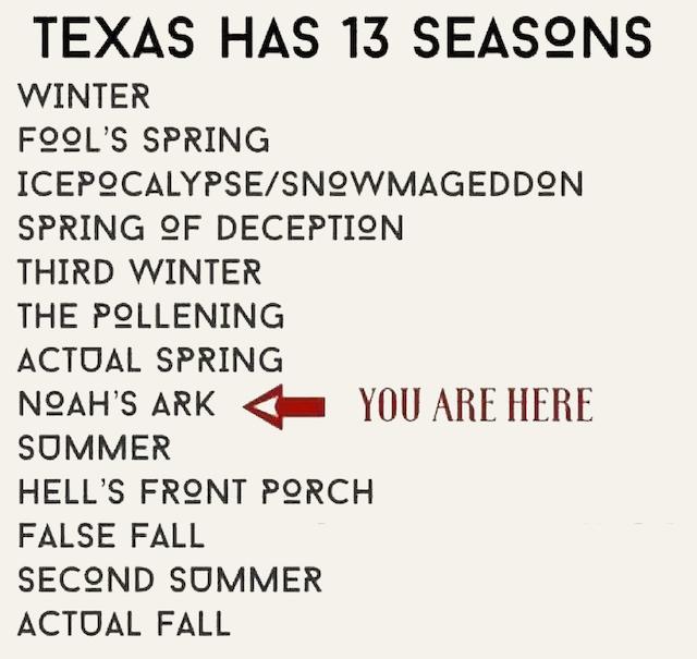 Photo of Texas seasons